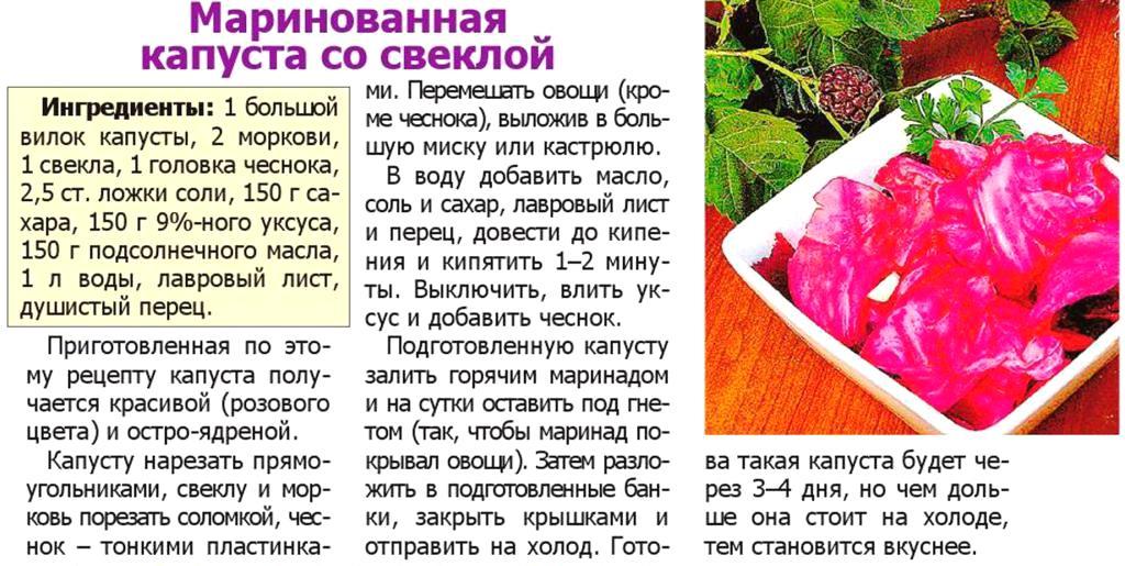 Суточная капуста со свеклой рецепт с фото