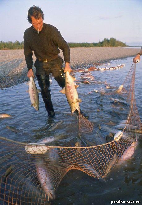рыбалка сетями бреднями неводами